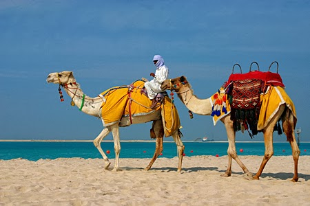 Tour  du lịch TP.HCM - Dubai - Nam Phi